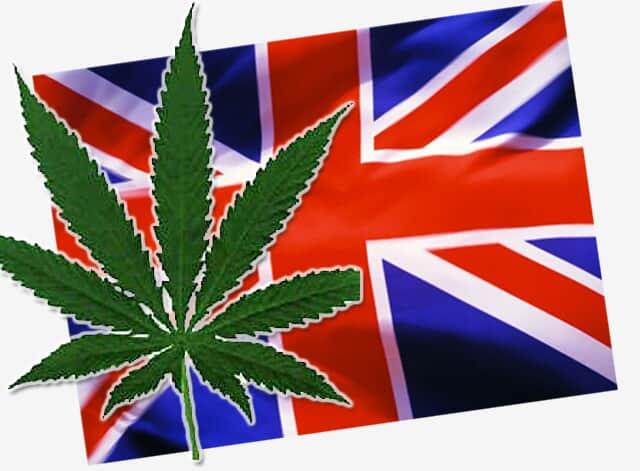 Inglaterra rediscute a descriminalização da maconha