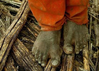 Brasil tem mau desempenho na luta contra o trabalho escravo