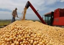 Operações do agronegócio: modernização da governança do produtor rural
