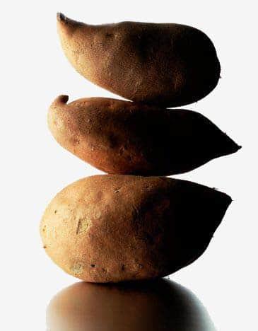 Projeto etanol da batata-doce - A opção da agricultura familiar