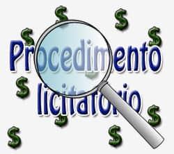 Uma análise econômica: procedimento licitatório x poder judiciário