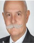 Estrutura organizacional e processo decisório em escritórios de advocacia