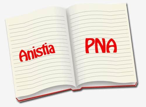 A  anistia e o PNA