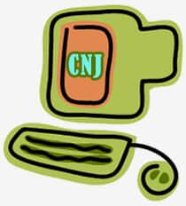 Processo Eletrônico no CNJ e nas Faculdades de Direito