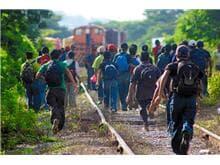 MJ reformulará legislação sobre migrações