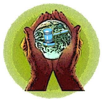 Como abordar o direito ambiental para advogados não ambientalistas?– Cogitações do auditor jurídico Migalheiro –