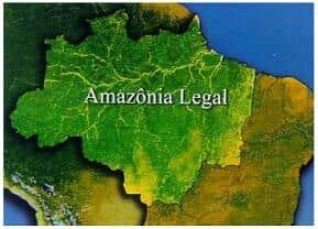 Câmara restringe posse de terra na Amazônia por estrangeiros