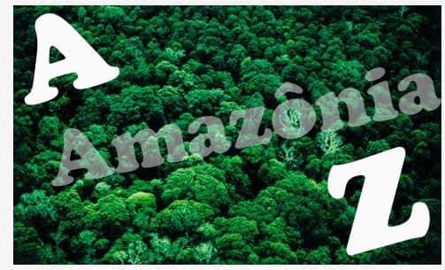 De A a Z: A multidisciplinar sustentabilidade amazônica