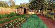 Cabe ao credor provar que pequena propriedade rural é penhorável