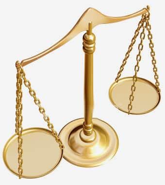 Direito, política e história