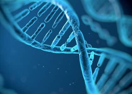 Terapia gênica e a Bioética