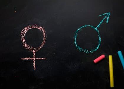 É inconstitucional norma do PR que proíbe ensino sobre gênero nas escolas