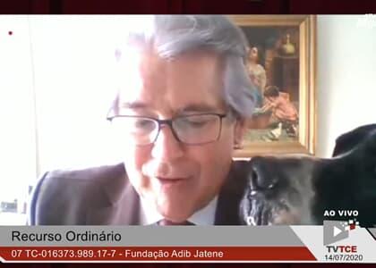 Cachorro invade sessão online do TCE/SP e baba em terno de conselheiro