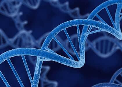 Projeto DNA do Brasil