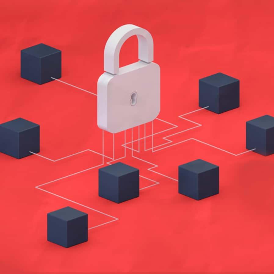 A política de privacidade nas empresas de acordo com a LGPD