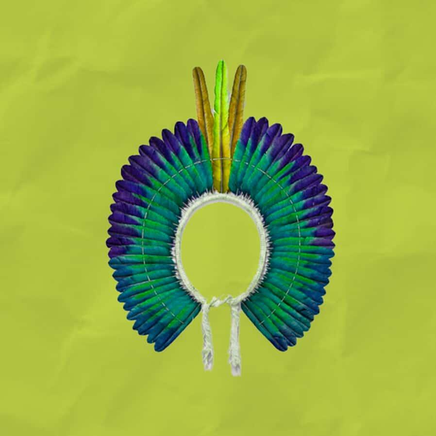 Garantia dos direitos fundamentais e a mitigação da garantia constitucional aos povos indígenas