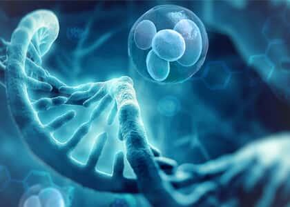 Aconselhamento genético e eugenia