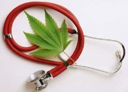 Uso terapêutico da Cannabis Sativa